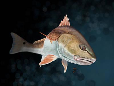 Redfish Inspection Poster