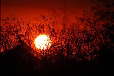 Poster featuring the photograph Redorange Sunset by Matt Harang