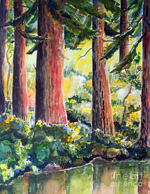 Redwoods Poster by Terry Banderas