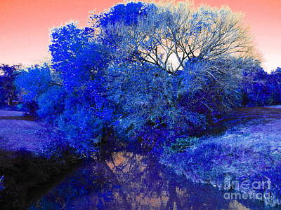 Reflection In Blue Poster by Diane Miller