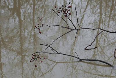 Reflections Poster by Daniel Kasztelan