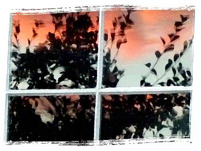 Reflections In An Old Window Poster by Will Borden
