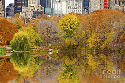 Reflections In Central Park New York City Poster