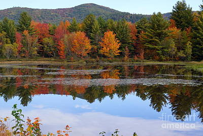 Reflections Of Fall Poster by Kerri Mortenson