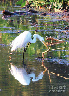 Reflections On Wildwood Lake Poster