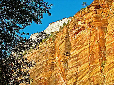 Refrigerator Canyon Wall From Angel's Landing Trail In Zion National Park-utah Poster