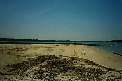 Poster featuring the photograph Rehoboth Bay Beach by Amazing Photographs AKA Christian Wilson