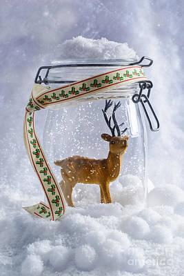 Reindeer Figure Poster by Amanda Elwell
