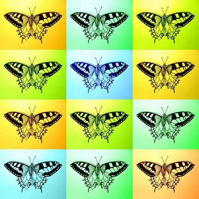 Relaxing Butterflies Poster by Cathy Jacobs