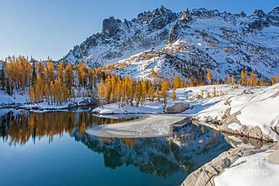 Resplendent Alpine Autumn Poster by Mike Reid