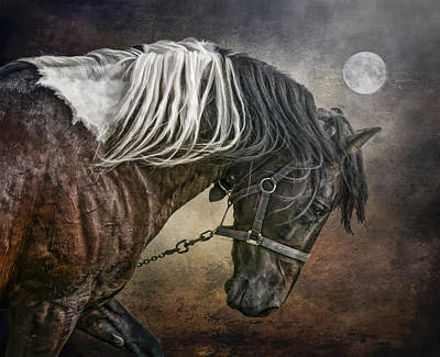 Poster featuring the photograph Restless Moon by Brian Tarr