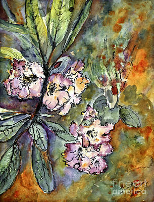 Rhododendron Watercolor And Ink Poster