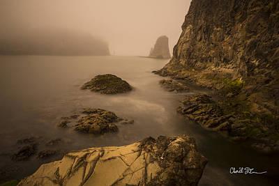 Rialto Beach Rocks Poster