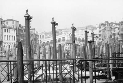 Rialto Bridge Venice Poster by Dorothy Berry-Lound
