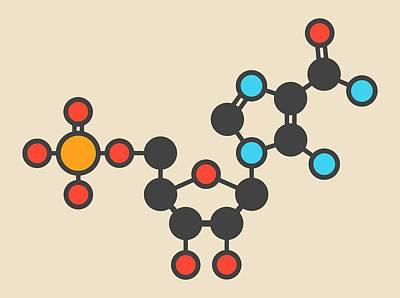 Ribonucleotide Molecule Poster by Molekuul
