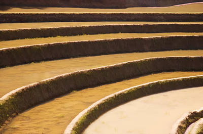 Rice Terraces Of Yuanyang 3 Poster