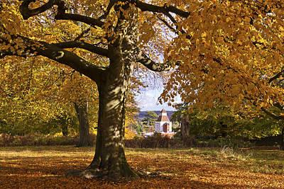 Richmond Autumn Poster by Maj Seda
