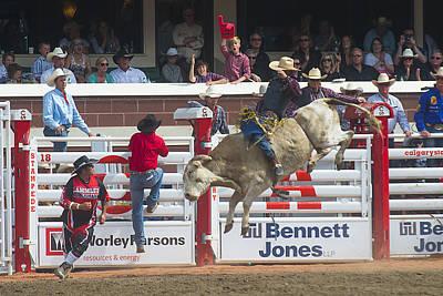 Ride Em Cowboy Poster by Bill Cubitt