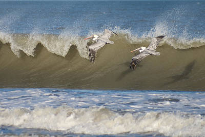 Poster featuring the photograph Riding The Wave by Gregg Southard