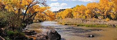 Rio Grande River At The Orilla Verde Poster by Panoramic Images