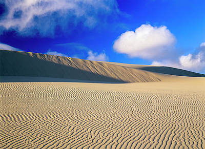 Rippled Sand And Dunes With Blue Sky Poster by Robert L. Potts
