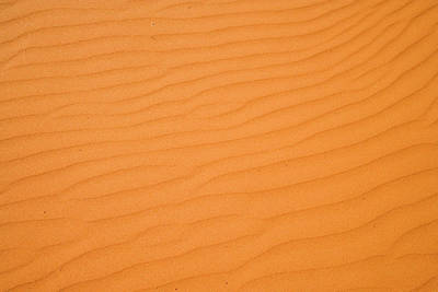 Ripples In Sand Dunes, Strzelecki Poster by David Wall