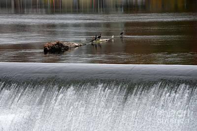 River Dam Poster by Mark Ayzenberg
