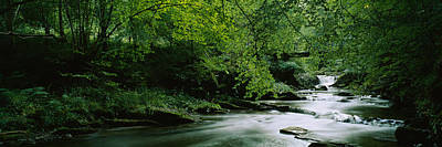 River Flowing In The Forest, Aberfeldy Poster by Panoramic Images