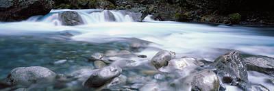 River, Hollyford River, Fiordland Poster