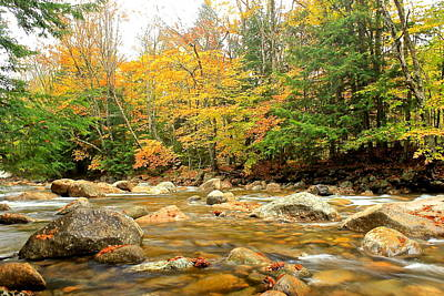 Poster featuring the photograph River In Fall Colors by Amazing Jules