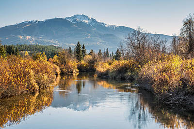 River Of Golden Dreams In Autumn Poster by Pierre Leclerc Photography
