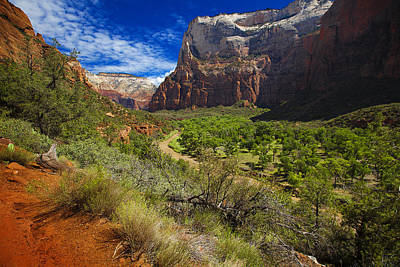 River View In Zion Park Poster by Richard Wiggins