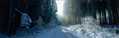 Road, Hochwald, Germany Poster by Panoramic Images