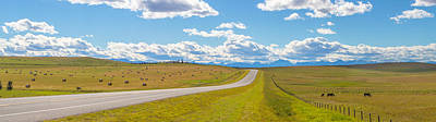 Road Passing Through A Field, Alberta Poster by Panoramic Images