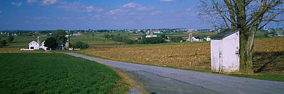 Road Passing Through A Field, Amish Poster by Panoramic Images
