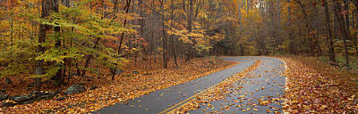 Road Passing Through Autumn Forest Poster