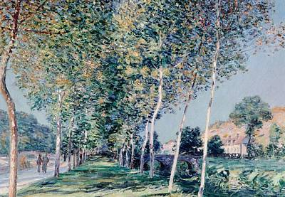 Road To Louveciennes  Poster by Alfred Sisley