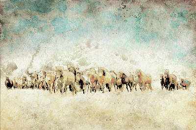 Roaming Horses Poster by Ynon Mabat