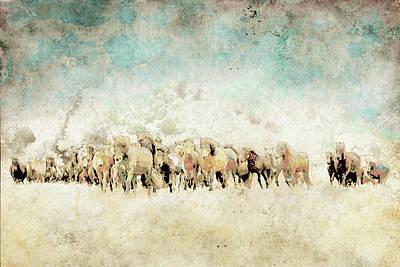 Roaming Horses Poster