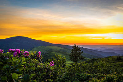 Roan Mountain Sunset Poster