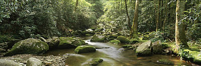 Roaring Fork River Flowing Poster by Panoramic Images