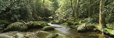 Roaring Fork River Flowing Poster