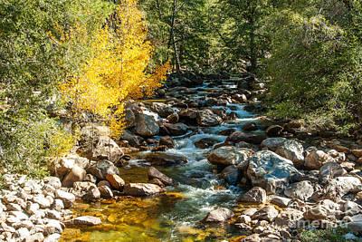 Roaring River 1-7782 Poster