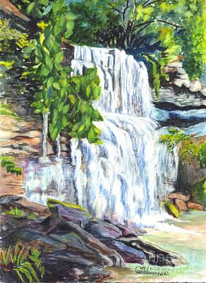 Rock Glen Falls Ontario Canada Poster by Carol Wisniewski