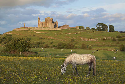 Rock Of Cashel_ County Tipperary Poster by Carl Bruemmer