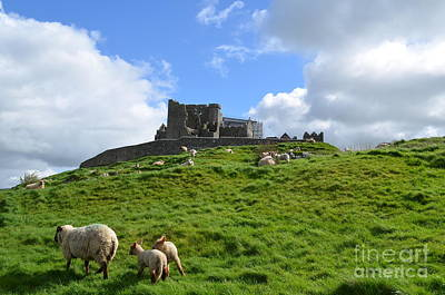 Rock Of Cashel In The Distance Poster