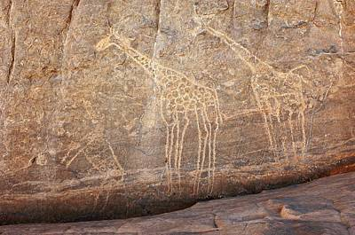 Rock Paintings, Algerian Sahara Poster by Science Photo Library