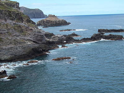Poster featuring the photograph Rocky Coastline by Sheila Byers