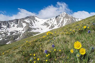 Rocky Mountain Springtime Poster