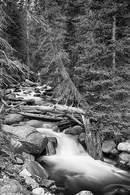 Rocky Mountain Stream In Black And White Poster by James BO  Insogna